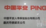 中国平安人寿有限公司